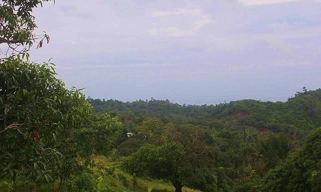sirao-peak-brgy-malubog-cebu-city