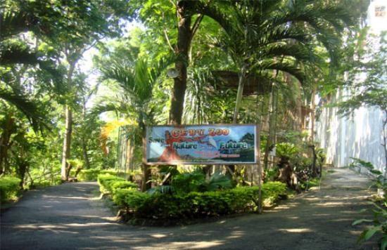 cebu-zoo