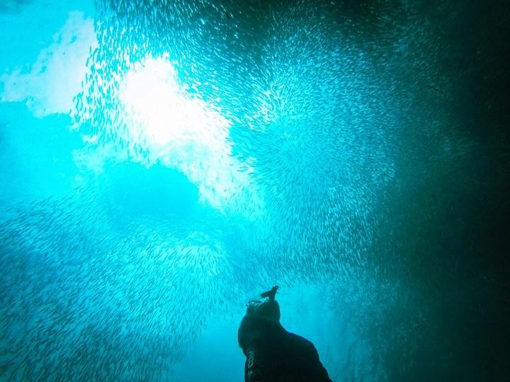 Badiot Diving | Photo by Dennis Thereseus