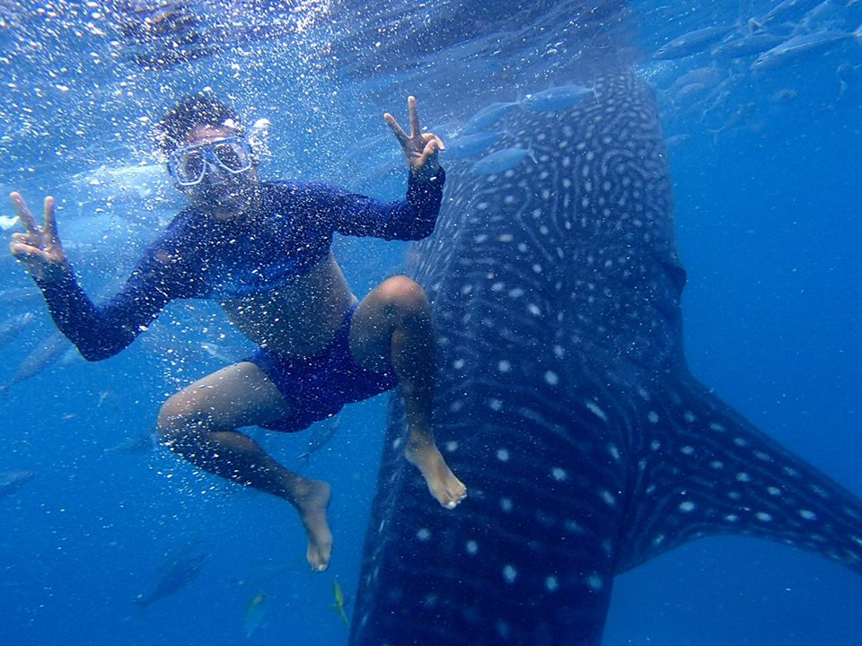Oslob swimming with the whale sharks | Photo By: Carixa Marie Jordan Coming