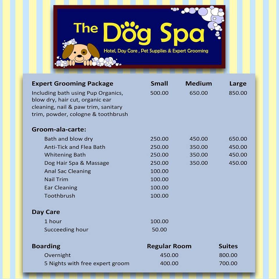 Photo from The Dog Spa & Hotel