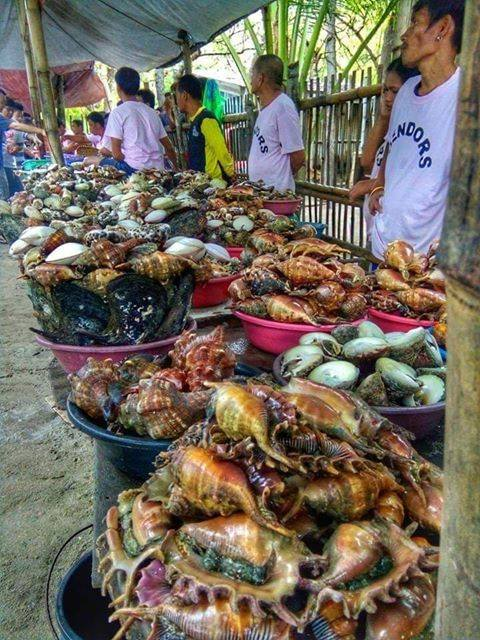 Fresh seafoods from Caohagan Island