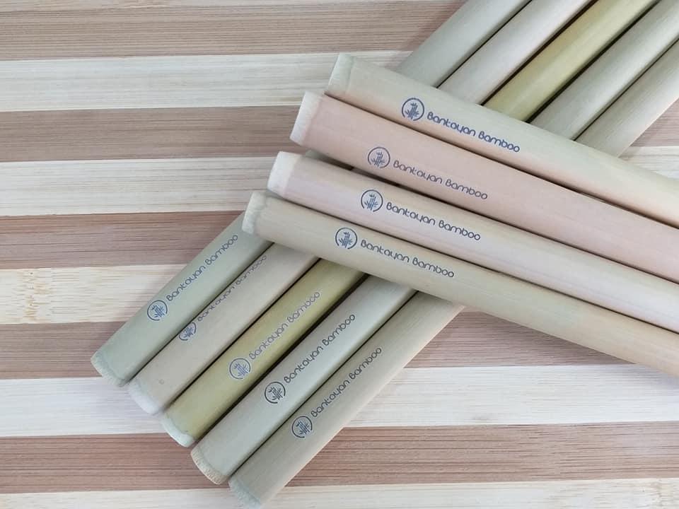 Bantayan Bamboo Innovation Workshop
