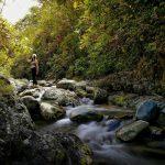 Foressa Trails
