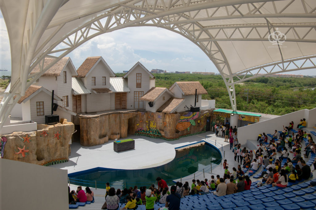 cebu ocean park bird show